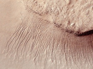 Portions of the Martian surface shot by NASA's Mars Reconnaissance Orbiter show many channels from 1 meter to 10 meters wide on a scarp in the Hellas impact basin, in this photograph taken January 14, 2011 and released by NASA March 9, 2011. Scientists have found the first evidence that briny water may flow on the surface of Mars during the planet's summer months, a paper published on Monday showed.  Researchers found telltale fingerprints of salts that form only in the presence of water in narrow channels cut into cliff walls throughout the planet's equatorial region.  REUTERS/NASA/JPL-Caltech/Univ. of Arizona/Handout   FOR EDITORIAL USE ONLY. NOT FOR SALE FOR MARKETING OR ADVERTISING CAMPAIGNS. THIS IMAGE HAS BEEN SUPPLIED BY A THIRD PARTY. IT IS DISTRIBUTED, EXACTLY AS RECEIVED BY REUTERS, AS A SERVICE TO CLIENTS
